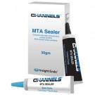 Channels MTA Sealer
